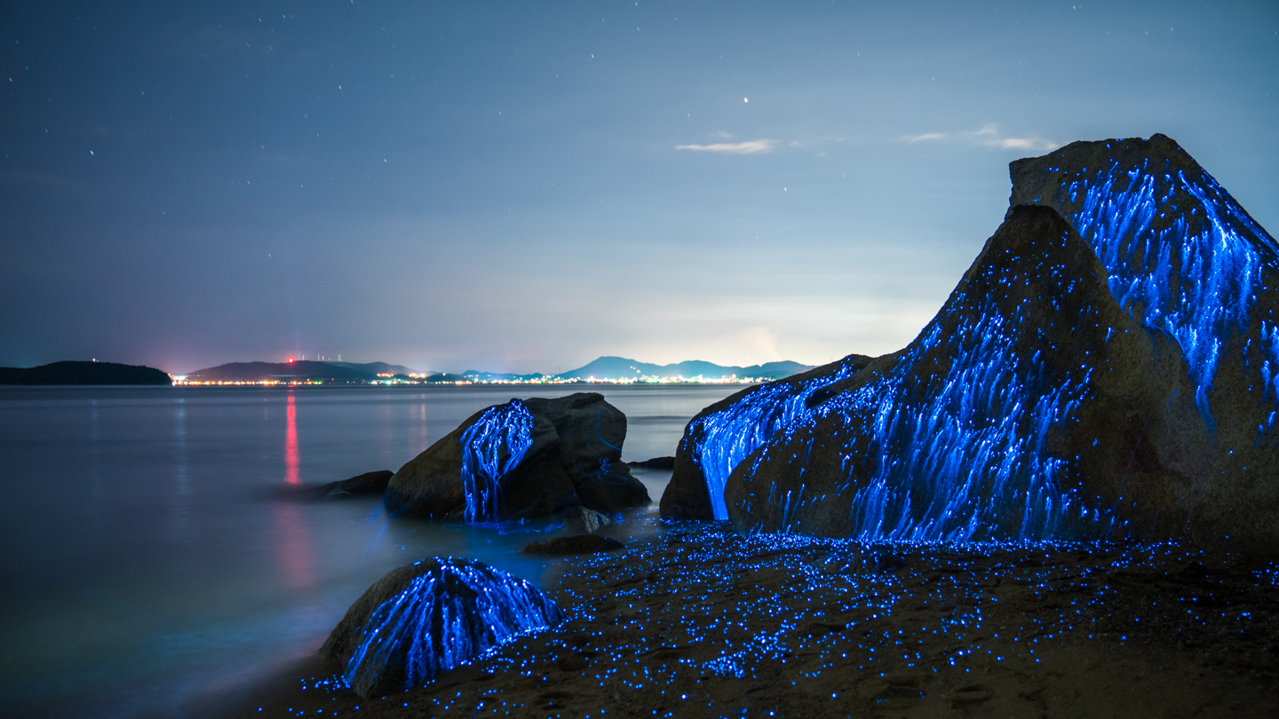 These rocks in Japan turn striking blue at night when these